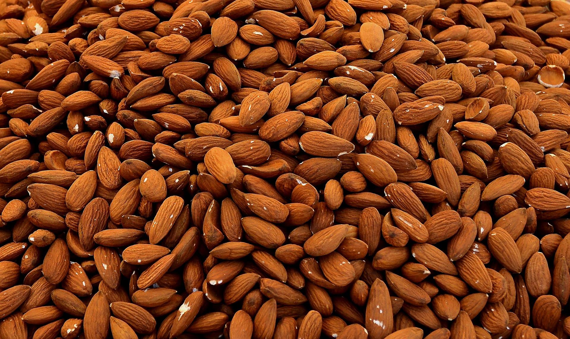 Vast fields of almonds